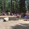 Pinecrest campsite2