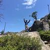 Pinecrest hike4 - Leo