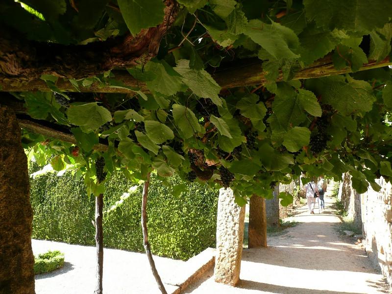 Mateus Palace and Gardens, Portugal