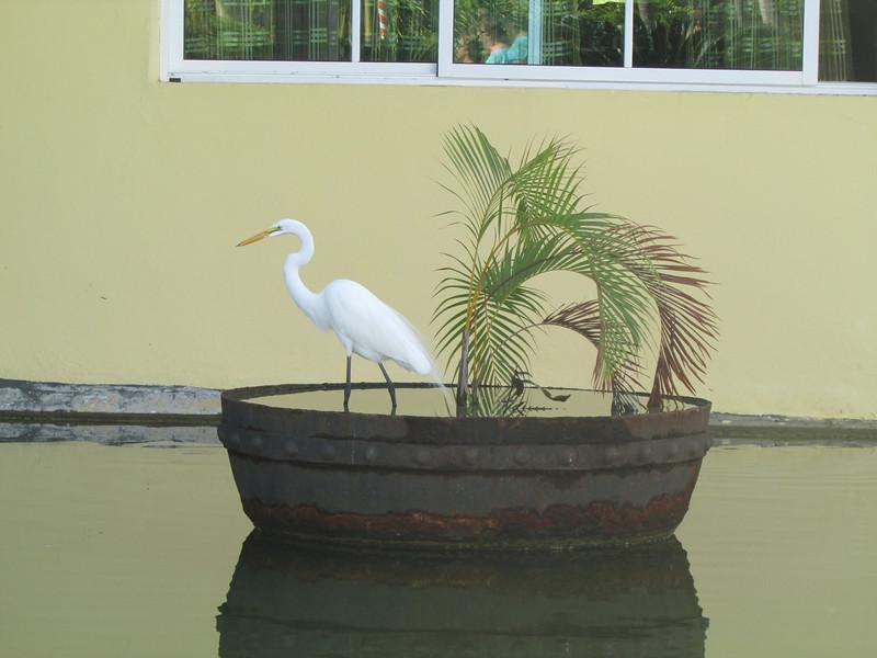 Punta Cana1_12 25 13_9351