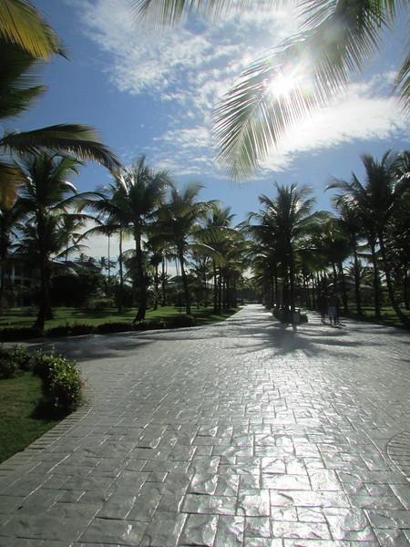 Punta Cana1_12 26 13_9295