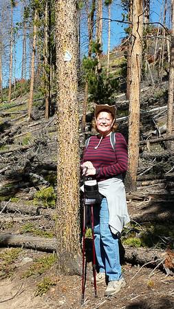 Hiking on Colorado Trail