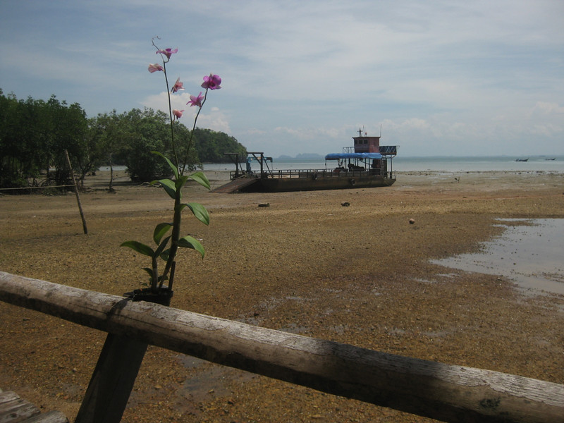 Low-tide. The pontoons are used to ship goods on or off Railay as it is only accessible by sea