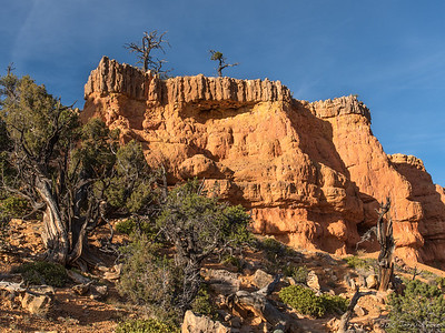 The Arches Trail