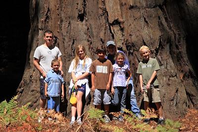 2008-08-12_Redwoods_013