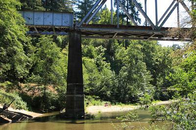 2008-08-12_Redwoods_006