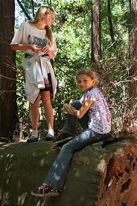 2008-08-12_Redwoods_041