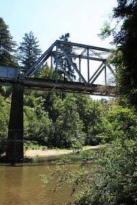 2008-08-12_Redwoods_005