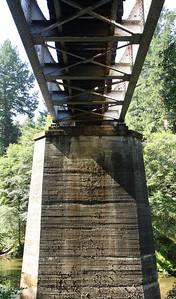 2008-08-13_Redwoods_037
