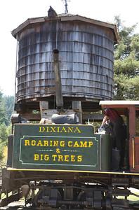 2008-08-13_Redwoods_052