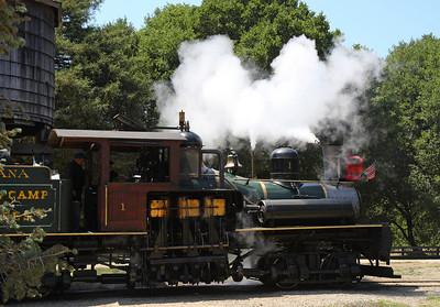 2008-08-13_Redwoods_050