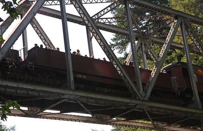 2008-08-13_Redwoods_042