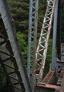 2008-08-14_Redwoods_027