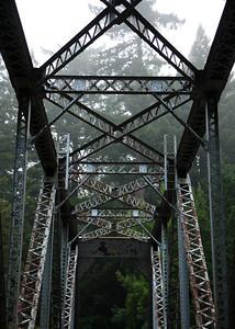2008-08-14_Redwoods_023