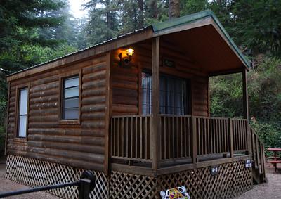 2008-08-14_Redwoods_001