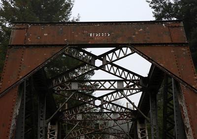 2008-08-14_Redwoods_029