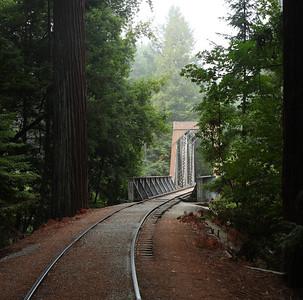 2008-08-14_Redwoods_039