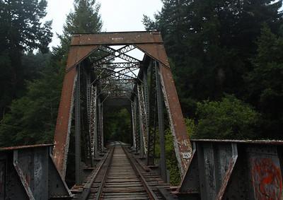 2008-08-14_Redwoods_028
