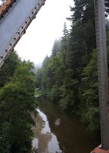 2008-08-14_Redwoods_031