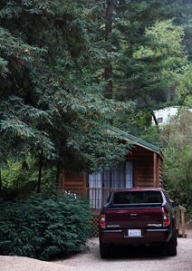 2008-08-14_Redwoods_009