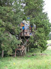 The ex-husband of the woman who lived there made this treehouse for their son.  It reminds me of Picasso.