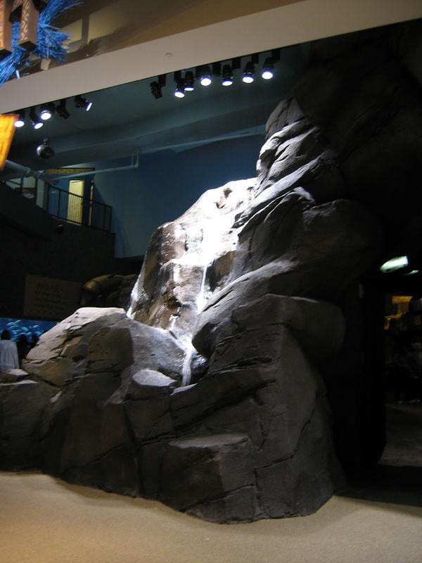 2006-03-01 58-georgia-aquarium-57