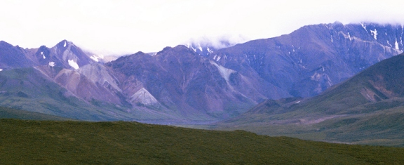 Another Denali National Park and Preserve panorama, during a break from the bouncy bus ride.