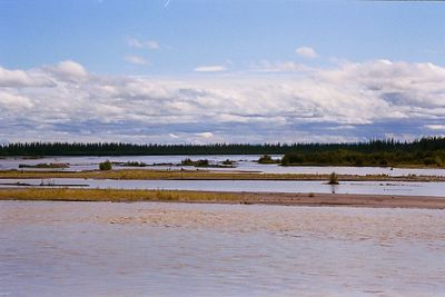 The muddy Chena River, near the confluence with the Tanana River, several miles upstream from Fairbanks.