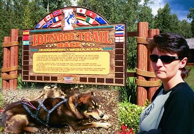 Day 5.  In Wasilla, just outside of Anchorage, at the Iditarod headquarters (inset: Alaskan Huskie sled dog). Lots of barking, spirited dogs wanting to run run run!