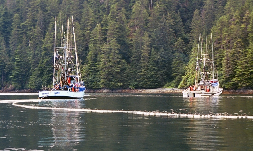 A couple of fishing boats managing their net near Sitka, as we motored toward the sea kayaking location.