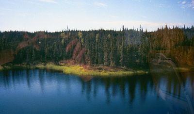 The landscape near Fairbanks as we head south toward McKinley Park (town) near Denali Nat'l Park.