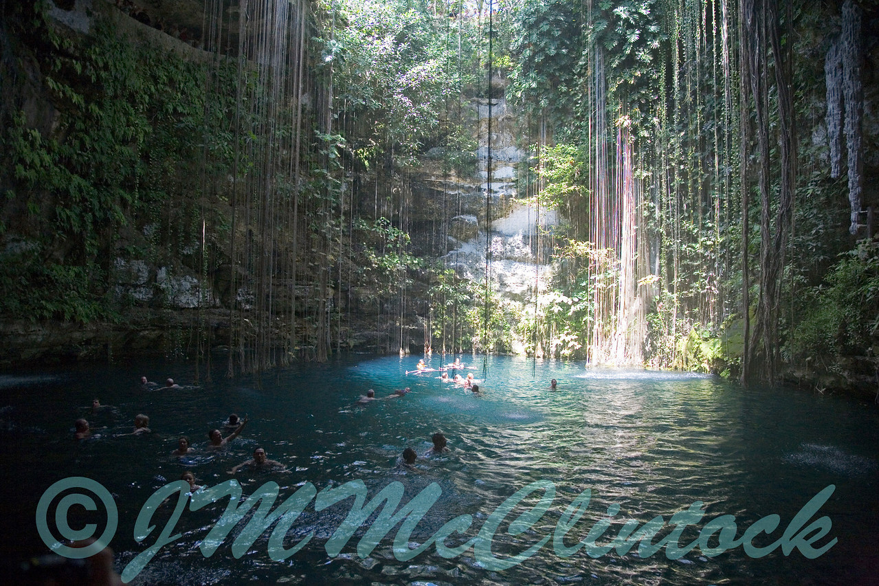 The cenote from water level.