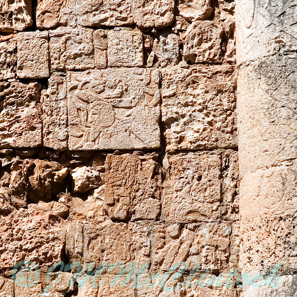 The large square in the near the center apparently has a bearded man in the lower left corner.  The natives of this area did not have beards.  This carving of a bearded man done sometime in the first millennium AD suggests Europeans may have visited well before 1492.