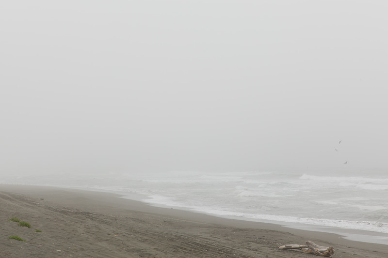 Foggy Pacific