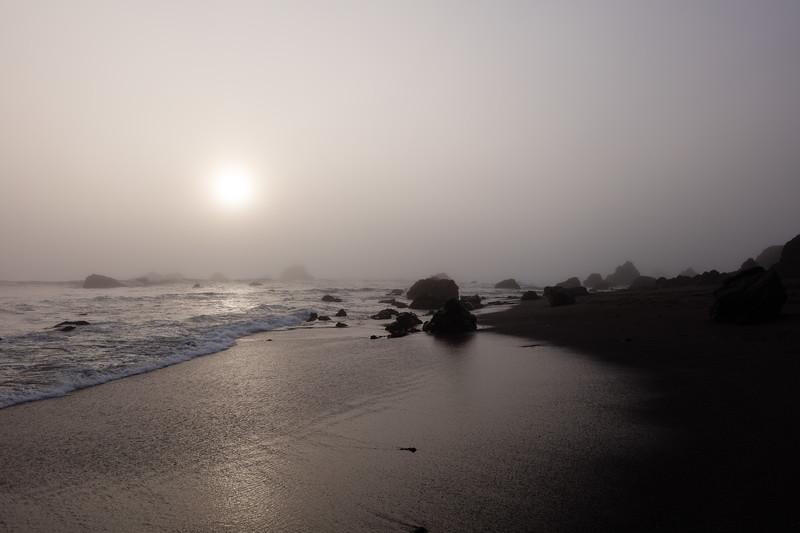 Foggy Coast