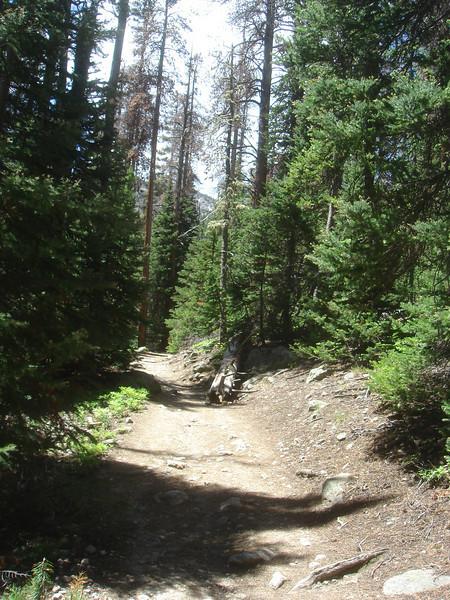 Hike to Fern Lake