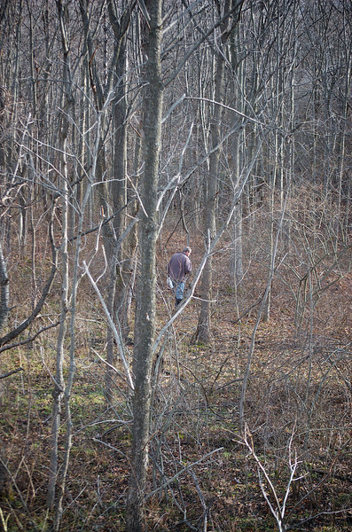 There is a Hunting stand just inside the edge of the woods, overlooking the meandering paths cut amid the bramble and bush. Most of the initial photos of the grounds were taken from its perch and afforded view.