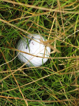Royal Dornoch Golf Club - Scotland Sept 2010