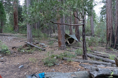 Camp #11, near the junction of the MFKR and the Simpson Meadow trails