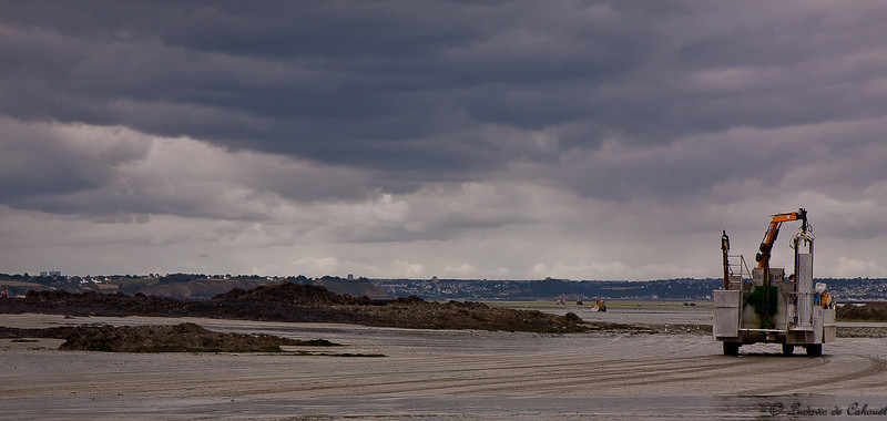 Baie de Saint Brieuc - Cotes d'Armor - France