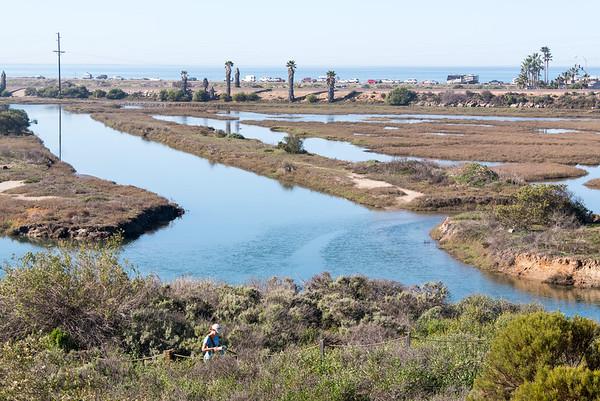 San Elijo Lagoon February 14, 2015
