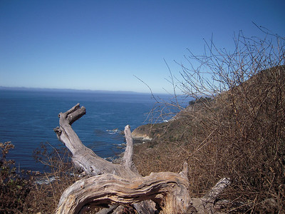 Beautiful Coast of  Big Sur