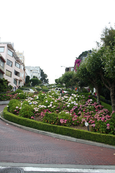 Lombard Street<br /> <br /> Contributed Photo by Maria Dyson/Ellen Yeates