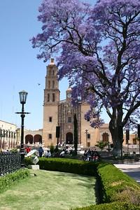 Church - Dolores Hidalgo