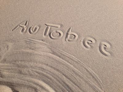 2014 - Sand Dunes