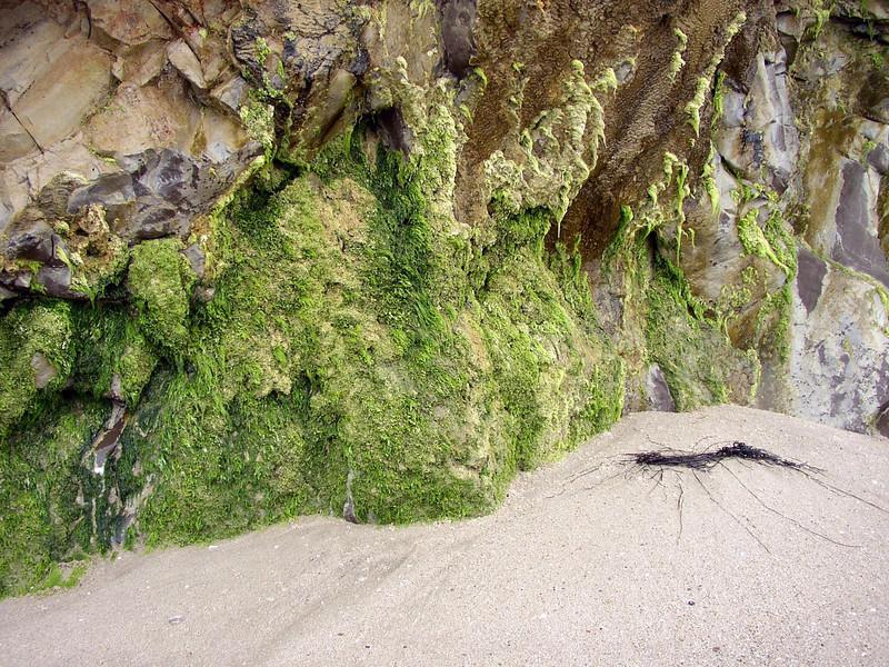 Rockscape - Santa Barbara, CA