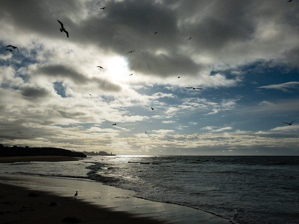 Sun and Clouds and Birds and Sea