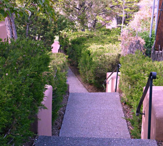 Walkway Behind a Fence