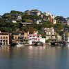 One of the hill in Tiburon.