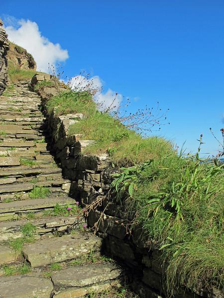 Wallago Steps in Wallago.